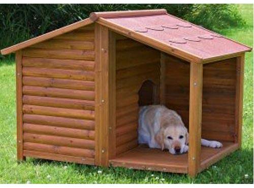 Come creare una cuccia fai da te per cani | Ohga!