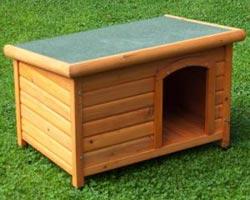 cuccia per cani woody