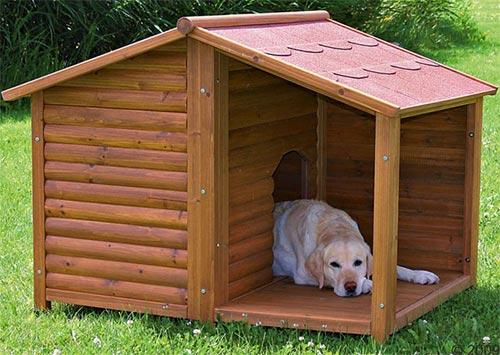 Cuccia per cane grande for Cucce da interno per cani taglia grande